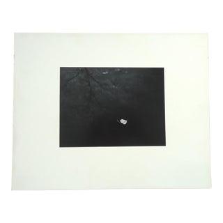 "1961 Dean W Hand ""Cottonwood Leaf on Pond"" Photograph"