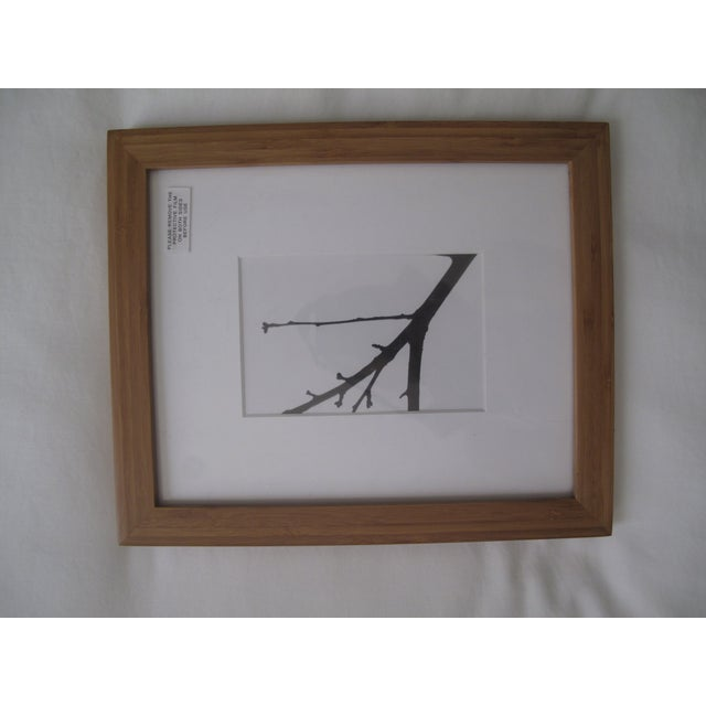 Image of Picturewall Bamboo Frames - Set of 9
