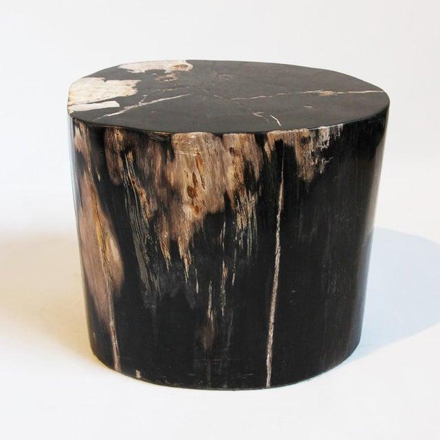 Petrified Wood Stool Chairish