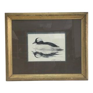 Bufflehead Duck Watercolor Painting 1976