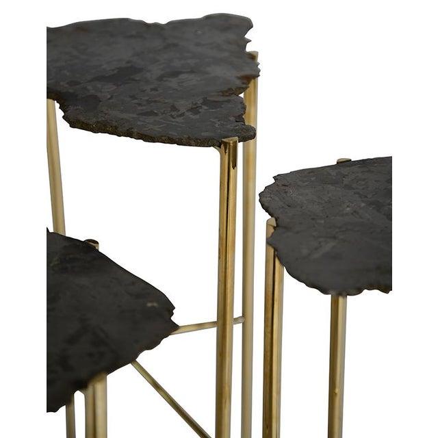 Image of Meteorite Tables