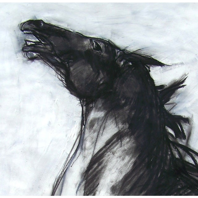 Horse II Drawing by Heidi Lanino - Image 2 of 2
