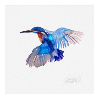"Premium Giclee Print of King Fisher , Special Price 10x10"" Hand Signed."