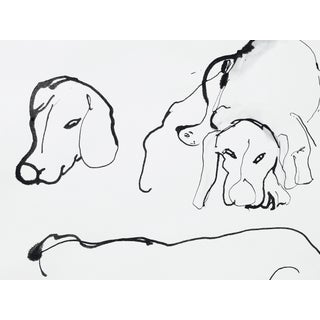 'Dogs' Ink on Paper Drawing