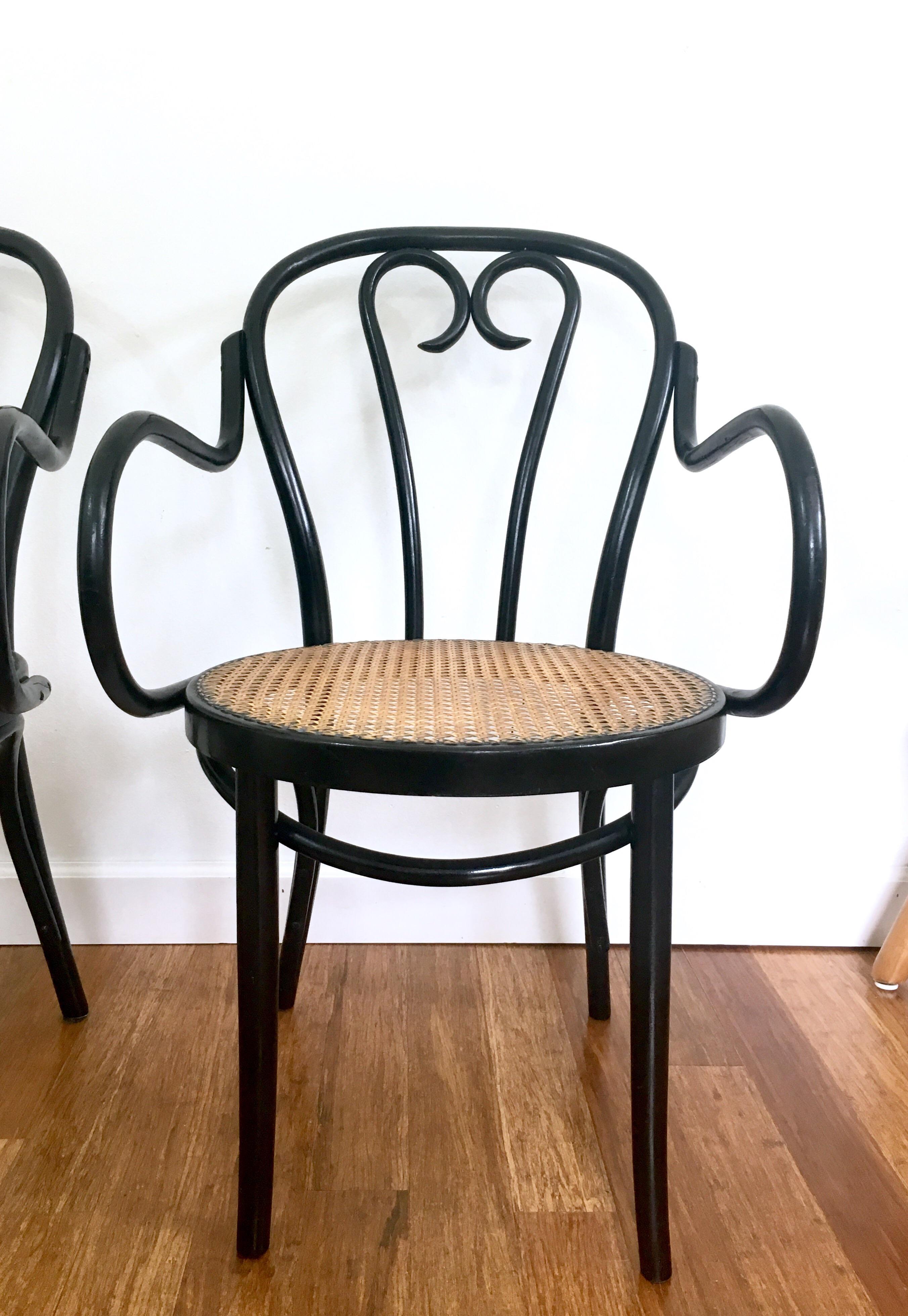 Elegant Bentwood Black U0026 Cane Chairs   A Pair   Image 4 Of 10