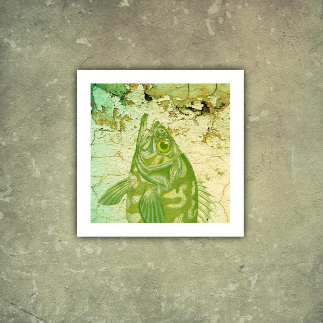Image of Antique Distressed Fish Archival Print