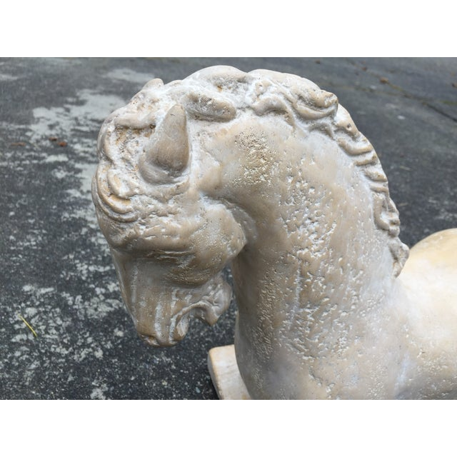 Image of Cast Stone Ancient Greek Horse Statue Bust