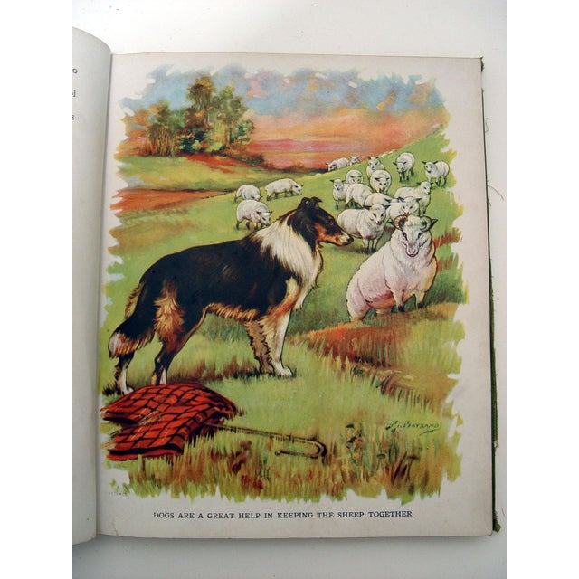 1928 Animal Friends Story Book - Image 6 of 10