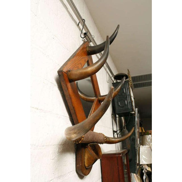 American Horn Hat Rack with Mirror - Image 6 of 6