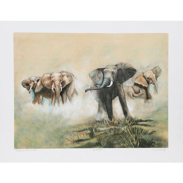 "C. Schultz, ""Challenge at Amboseli,"" Lithograph - Image 1 of 2"