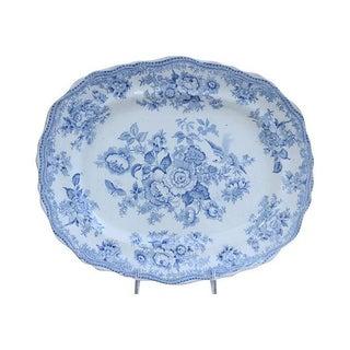 Antique English Ironstone Asiatic Pheasant Platter