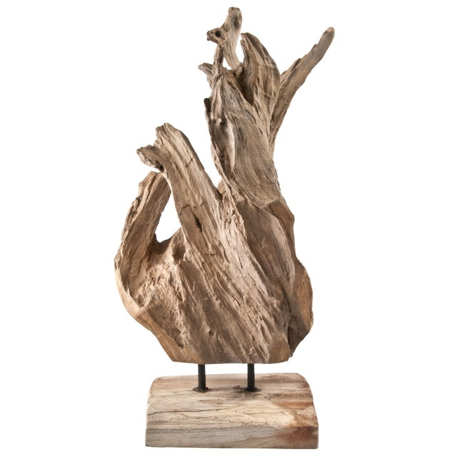 Image of Driftwood Fragment on Stand
