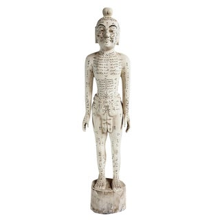 Chinese Acupuncture Statue XL Male