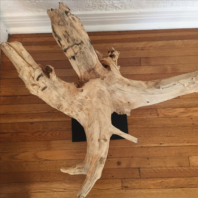HD Buttercup Oversized Driftwood on Stand - Image 6 of 9