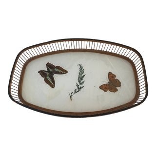 Mid-Century Pressed Butterfly Tray