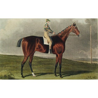 Racehorse Portrait Etching, Blacklock, 1823