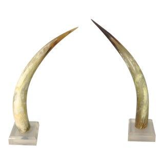 1960s Horns - A Pair
