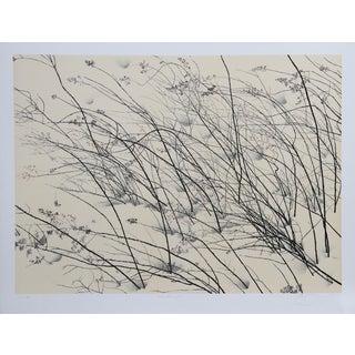 """Jon D'Orazio, """"Windswept,"""" Lithograph"""