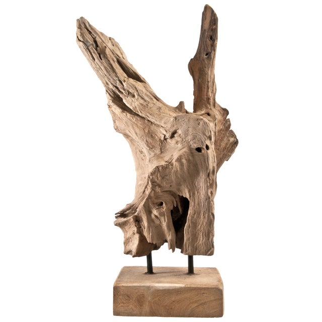 Driftwood Fragment Object - Image 1 of 4