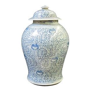 Chinese Blue & White Light Scroll Porcelain Jar