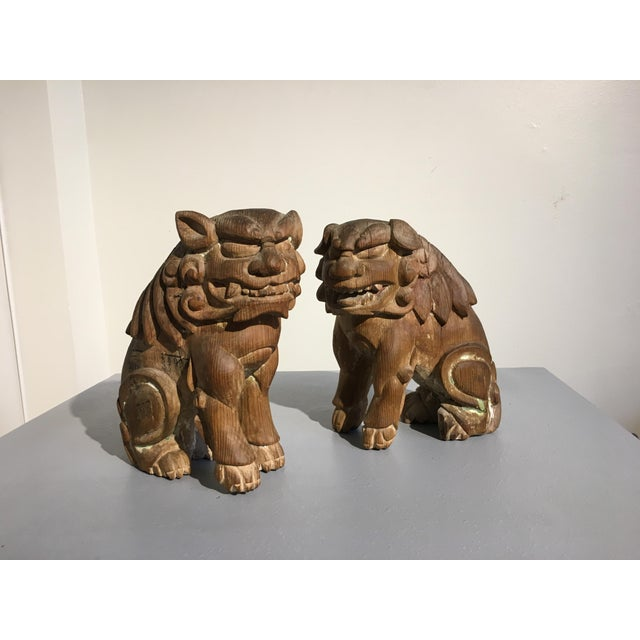 Pair Japanese Edo Period Carved Wood Komainu, early 19th century - Image 11 of 11