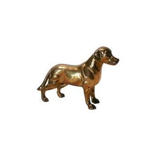 Heavy Brass Labrador