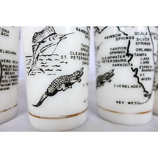Vintage Florida Nature Themed Bar Glasses - Set of 5 - Image 7 of 7