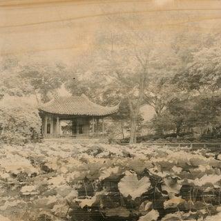 """Photo-Emulsion on Wood """"Lotus Garden"""""""