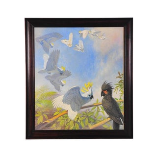White Parrots, Oil Painting by J. Moessel