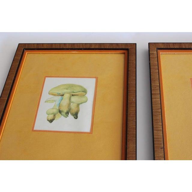 Vintage 1960s Mushroom Prints - A Pair - Image 6 of 6