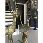 Image of Life-Sized Brass Deer Statues - A Pair