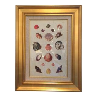 Gold Leaf Framed Shell Print