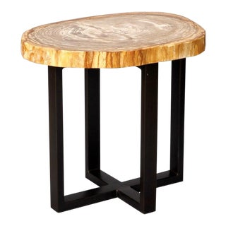 Exquisite Petrified Wood Side Table