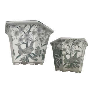 Green & White Orchid Cachepots - A Pair