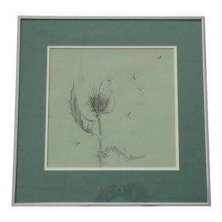 Julie Schaefer Framed Plant Study Drawing