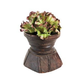Seed Sorter with Faux Succulent