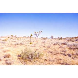 Desert Plains Photograph