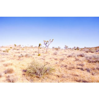 Desert Plains Photograph