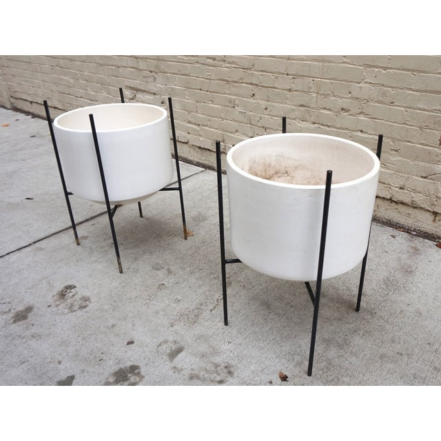 Iron Stands Large Gainey Planters - Pair - Image 4 of 5