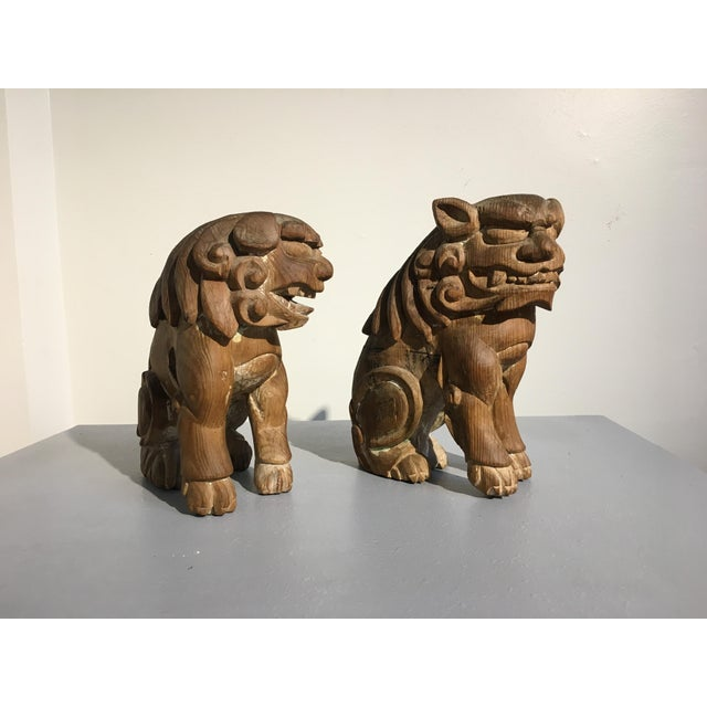Pair Japanese Edo Period Carved Wood Komainu, early 19th century - Image 7 of 11