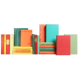 Colorful Mid-Century Bookshelf - Set of 20