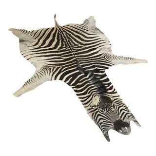 "Natural Zebra Hide Rug - 6'3"" X 8'"