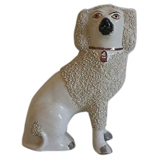 Staffordshire Mantel Dog