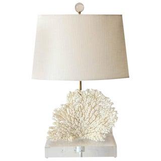 Coral Lamp