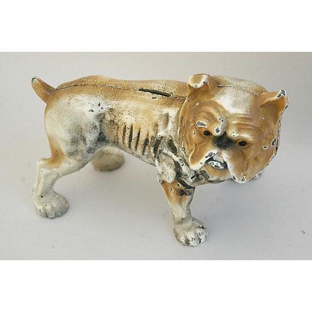 Image of Cast Iron Bull Dog Bank/Door Stop