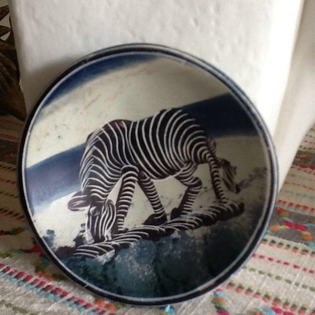 African Zebra Trinket Tray - Image 5 of 11