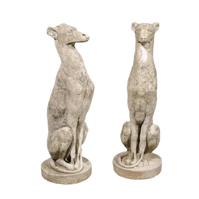 Pair of Vintage Carved Cement Greyhound Sculptures Sitting on Circular Bases - Image 1 of 9