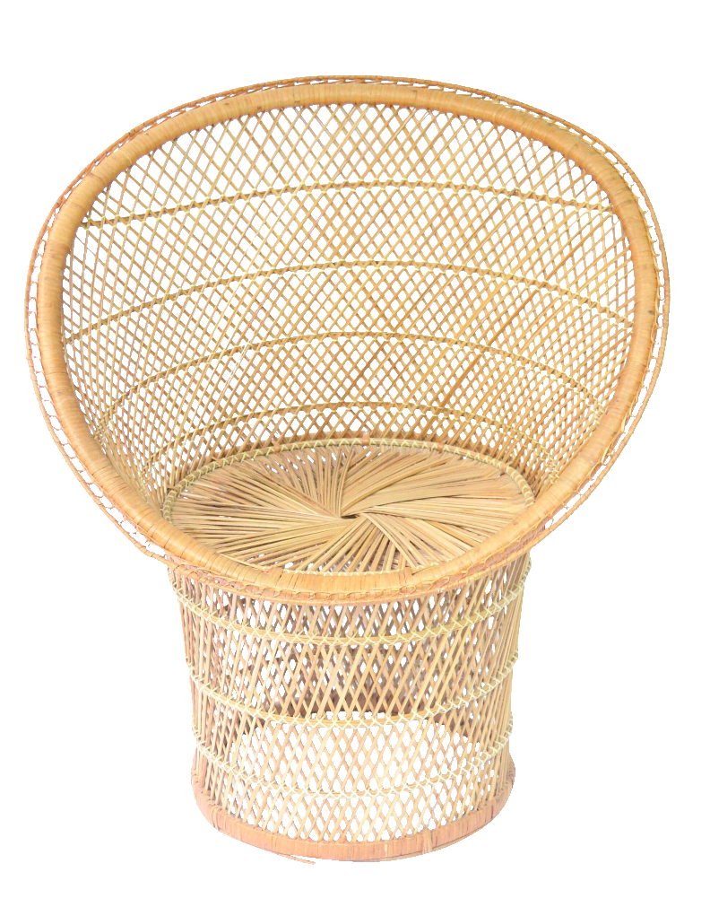 Image of Bohemian Rattan Peacock Accent Chair