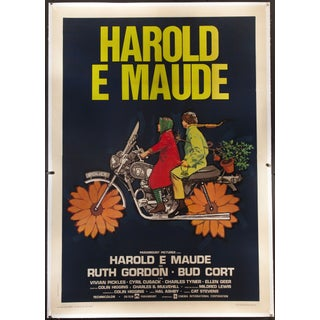 """Harold and Maude"" 1971 Italian Film Poster"