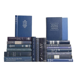 Midcentury Blue & White Books, S/20
